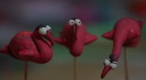 flamingosfushia